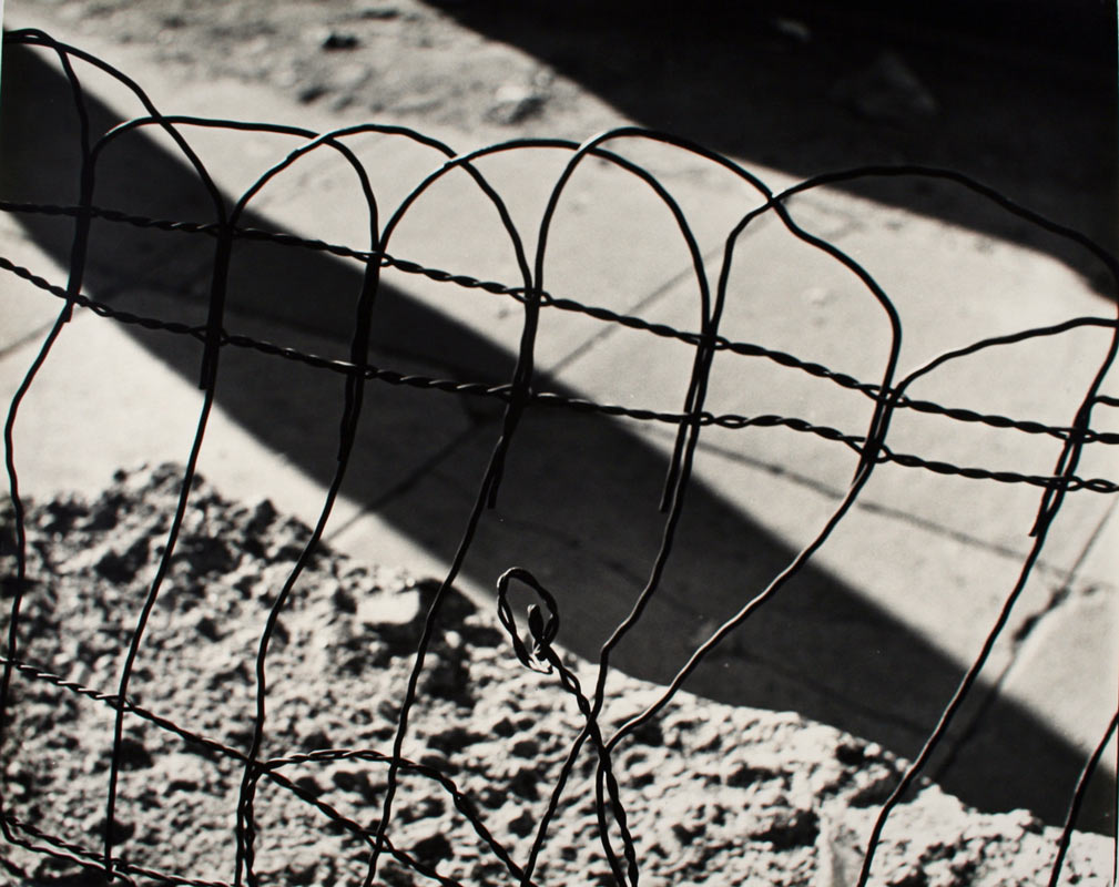 <p>Ilse Bing. <i>Garden wire</i>, 1953. Gelatin silver print. Henry Art Gallery, gift of Yuri and Zoe Gurevich, 2012.91. © Estate of Ilse Bing.</p>