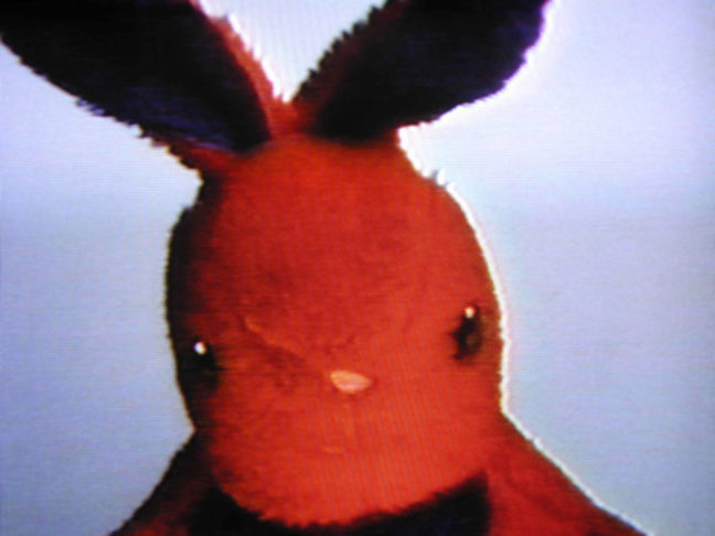 <p>Nayland Blake. <i>Negative Bunny</i> [video still]. 1994. VHS video tape&#x3B; Duration: 30 minutes. Henry Art Gallery, gift from the Collection of Steven Johnson and Walter Sudol, 2007.69. Copyright Nayland Blake, Courtesy Matthew Marks Gallery.</p>