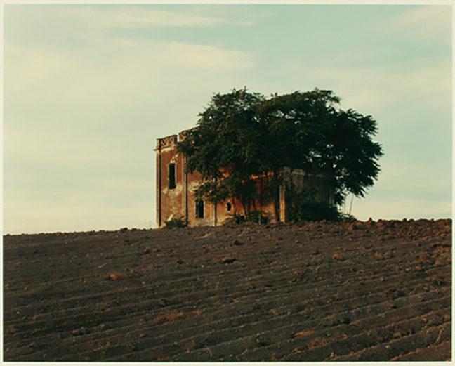 <p>Joel Sternfeld, <em>Abandoned 19th Century Farmhouse, Quartio Miglio, Rome, September 1989</em>, 1989. Chromogenic color print. Henry Art Gallery, gift of Burt and Jane Berman, FA 2008.200.</p>