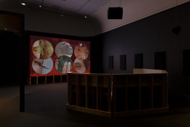 <p>Bambitchell, Installation view of&nbsp;<i>Bambitchell: Bugs & Beasts Before the Law</i>, 2021, Henry Art Gallery, University of Washington, Seattle. Photo: Jueqian Fang.</p>