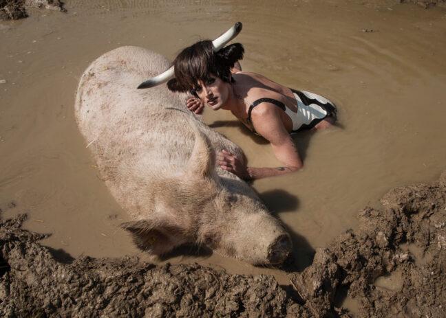 <p>Soya the Cow. Photo:&nbsp;Olivia Schenker</p>