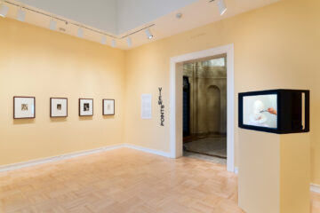 <p>Jean-François Millet and Jeanne Dunning. Installation view of <em>A Dialogue Between Jean-François Millet and Jeanne Dunning</em>, 2021, Henry Art Gallery, University of Washington. Photo: Jueqian Fang.</p>